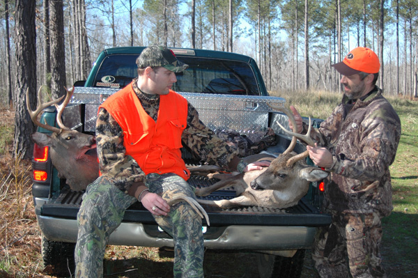 Deer with two hunters