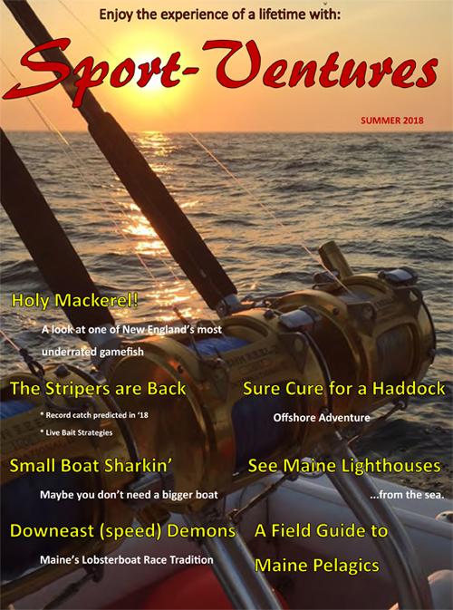 Sport Ventures Magazine